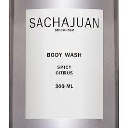 161-Body-Wash-Spicy-Citrus-300ml-96-dpi_B_v2